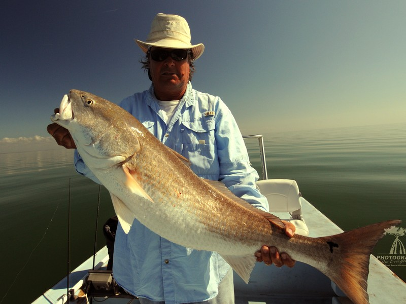 Captain Bruce with a nice bull red